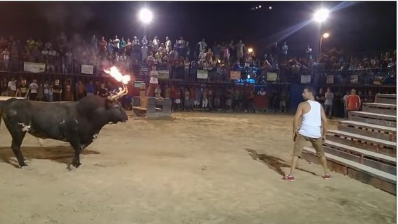 A cautat un taur furios si i-a dat foc coarnelor, in mijlocul unei arene. Ce a urmat i-a ingrozit pe spectatori