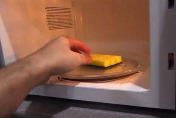 A luat un burete, l-a umplut cu apa si l-a pus in cuptorul cu microunde timp de 2 minute! Uite ce a gasit inauntru dupa ce a deschis usa