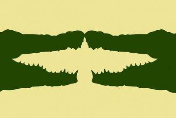 TESTUL care iti spune ce fel de persoana esti! Ce ai vazut prima data in poza, crocodilii sau pasarea?