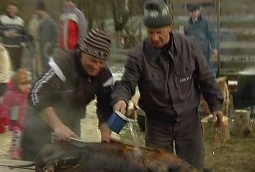 Christian Sabbagh, la taiatul porcului in Bucovina! Uite cum a luat parte la traditiile din partea locului