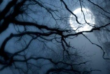 Fenomen astrologic spectaculos duminica noaptea! Vom avea parte de o superluna