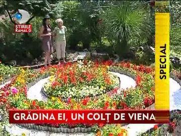 Gradina ei, un colt de Viena! Iata cum si-a amenajat o banateanca gradina din spatele casei VIDEO