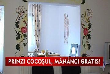 OFERTE INEDITE la un han din Bazna: Prinzi cocosul si mananci gratis VIDEO