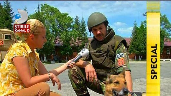 Talente nebanuite in ARMATA ROMANA! Bita, un ciobanesc german, MAESTRU in descoperirea substantelor explozive VIDEO