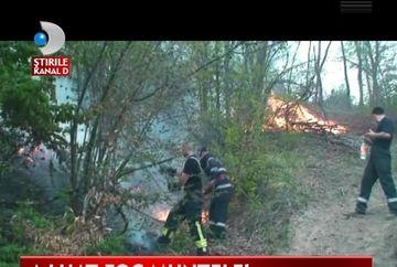 SOCANT! Hectare intregi de padure, MISTUITE DE FLACARI de la un foc lasat nesupravegheat de turisti VIDEO