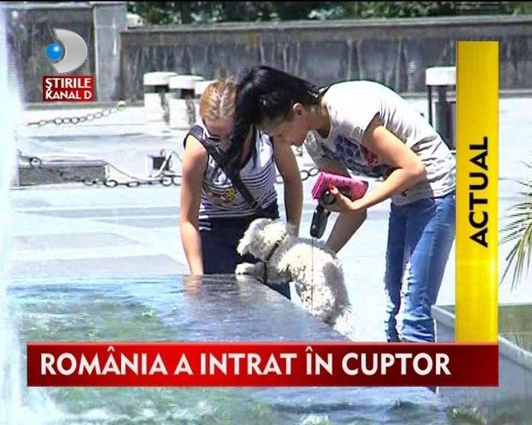 Romania s-a topit la soare. Vezi cum a fost prima zi de canicula!