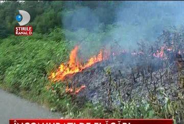 Incendiu in Maramures. Zeci de hectare de vegetatie sunt afectate VIDEO