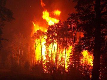 Incendiu in Suceava. Zeci de hectare de padure distruse
