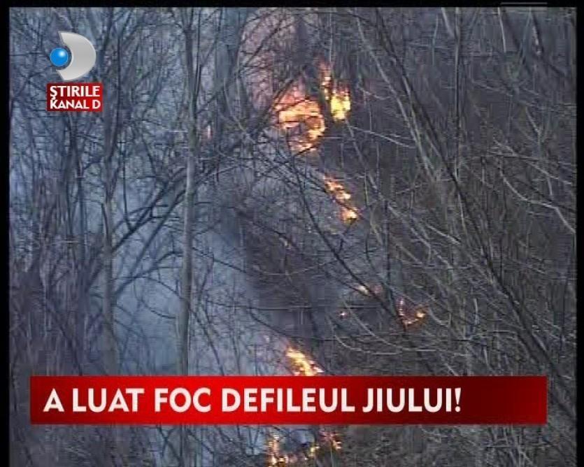 Incendiu de proportii in Defileul Jiului VIDEO