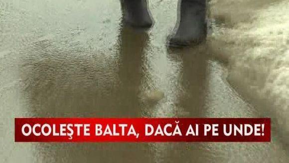 Baltile au pus stapanire pe strazile din Capitala VIDEO