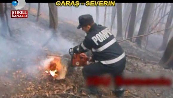 Dezastru in apropierea Parcului National Domogled! Un padurar s-a ales cu arsuri grave VIDEO
