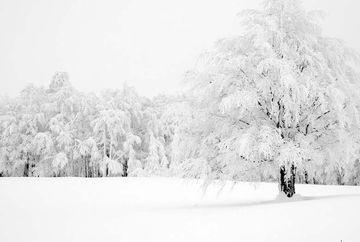 Cand vine iarna in Romania. Ce spune directorul Administratiei Nationale de Meteorologie