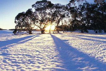 PROGNOZA METEO: Vin ninsorile? Iata cum va fi vremea pana pe 17 noiembrie