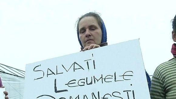 O sa mergem la piata ca la muzeu! Agricultorii ameninta ca legumele romanesti vor fi de doua ori mai scumpe