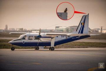 INFIORATOR! SEMNUL care A PREVESTIT tragedia aviatica din Apuseni