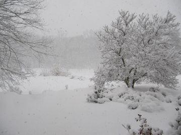 COD PORTOCALIU si GALBEN de ninsori si viscol. Vezi ce zone sunt afectate!