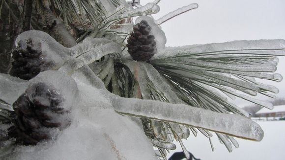 -22 de grade Celsius, POLUL FRIGULUI din Romania. Vezi unde s-a inregistrat cea mai SCAZUTA temperatura din acest an