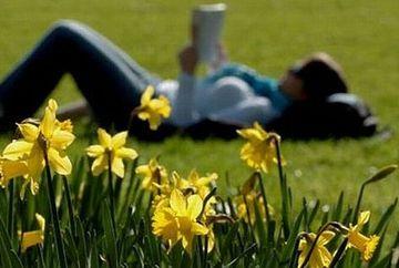 PROGNOZA METEO: Vezi cum va fi vremea de Florii si de Pasti