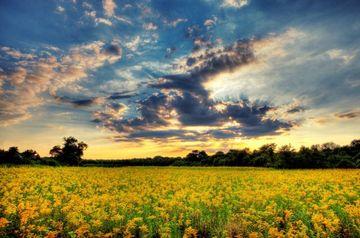PROGNOZA METEO: Iata cum va fi vremea pana in luna iulie