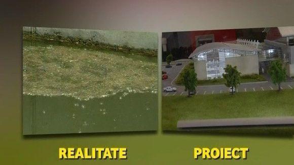 Cele mai fericite broscute din lume traiesc la Otopeni! Pentru confortul lor, autoritatile au investit in jur de 7 milioane de euro