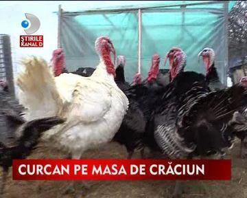 Carnea de curcan, o alternativa sanatoasa si dietetica pentru masa de Craciun VIDEO