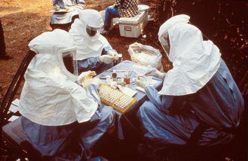 Virusul EBOLA, pe intelesul tuturor: Cum se transmite, simptome si metode de prevenire