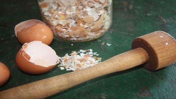 Sase utilizari geniale ale cojilor de oua! Sigur nu te-ai gandit ca le poti folosi asa