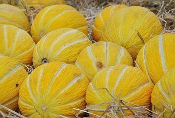Cinci fructe recomandate vara pentru a avea o silueta de invidiat