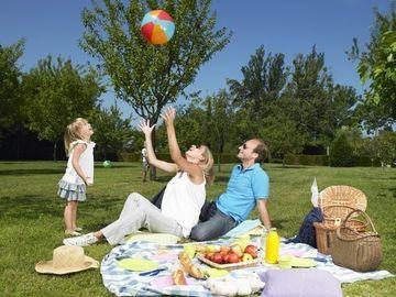 Camera Deputatilor a adoptat proiectul de lege privind activitatea de picnic