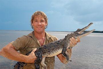 """Detalii iN PREMIERA despre moartea lui Steve Irwin: """"Vanatorul de crocodili"""" a fost injunghiat """"de sute de ori"""" de pisica de mare"""