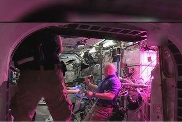 Am trait sa o vedem si pe asta! Astronautii au mancat pentru prima data in istorie salata cultivata la bordul Statiei Spatiale Internationale