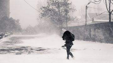 Se strica vremea: vin frigul, ninsorile si viscolul! Ce ne asteapta sambata si duminica