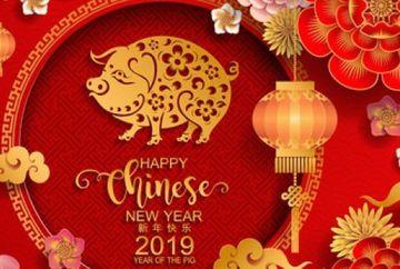 HOROSCOP. Zodiac chinezesc, a inceput Anul Mistretului de Pamant! Sfaturi pentru fiecare zodie! Predictii si remedii!