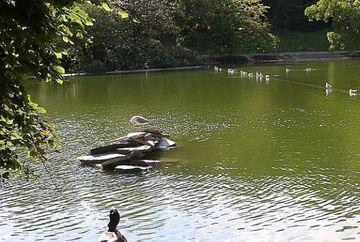 SOCANT! Cadavrele a doua romance, gasite intr-un lac din Paris. Cine erau femeile