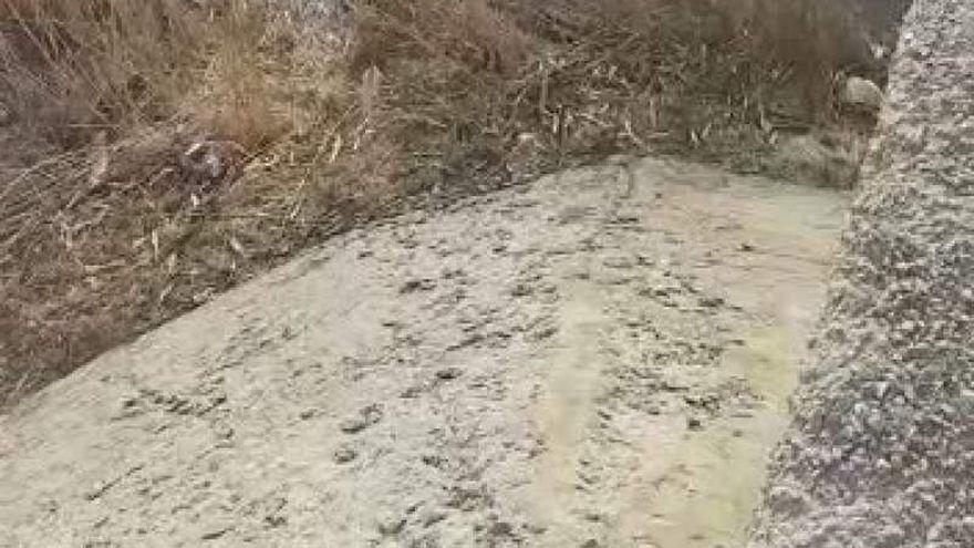 Accident cumplit: o masina s-a rasturnat intr-un rau in judetul Brasov! Ce au descoperit salvatorii cand au ajuns la fata locului