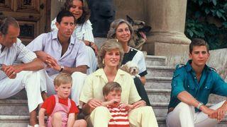 """Cutremurator! Printesa Diana ar fi putut supravietui accidentului! Ce a ucis-o cu adevarat: """"era mica, la locul gresit si rara"""""""