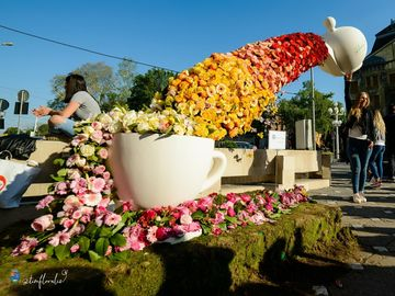 """Festivalul TimFloralis a transformat Timisoara in """"orasul florilor"""", in acest weekend!"""