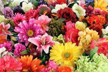 Spune-mi ce floare iti place ca sa-ti spun ce caracter ai