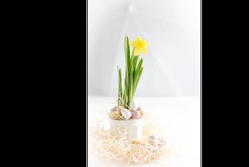 Decoreaza masa de Paste cu aranjamente florare sau cosuri cu flori!
