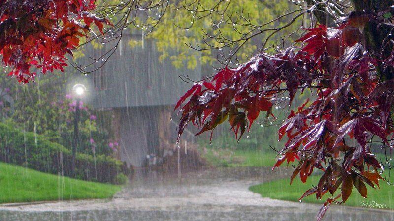 vara ploaie