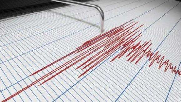 Două cutremure  au zguduit, vineri dimineața, România. Cât de puternice au fost