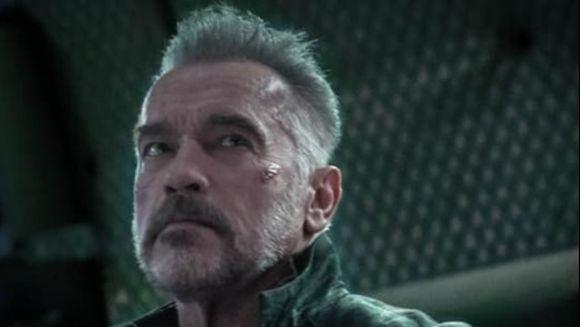 Video Arnold Schwarzenegger,  lovit violent in ceafa de un barbat. Filmarea care i-a șocat pe fani