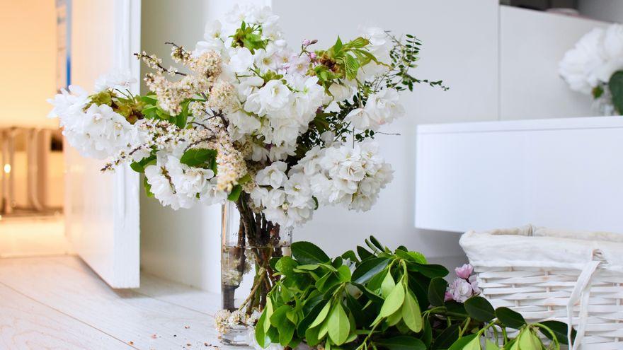 Vrei sa oferi un cadou deosebit? Alege flori in cutii!