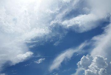 Alerta meteo! Cod galben de vijelii și ploi torențiale în următoarele ore