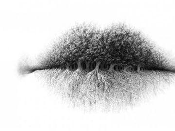 Tu ce vezi in imagine? Uite ce spune asta despre personalitatea ta