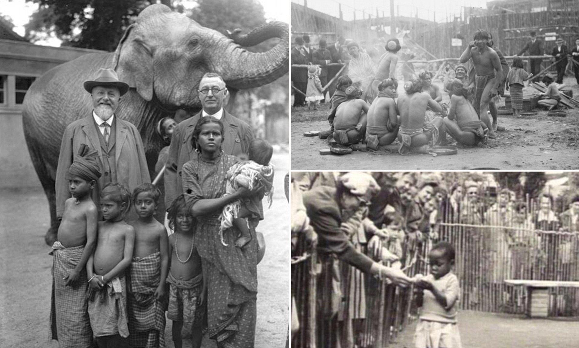 SOCANT! Gradini zoo cu oameni, in urma cu 60 de ani! Ce se intampla cu oamenii tinuti in custi?