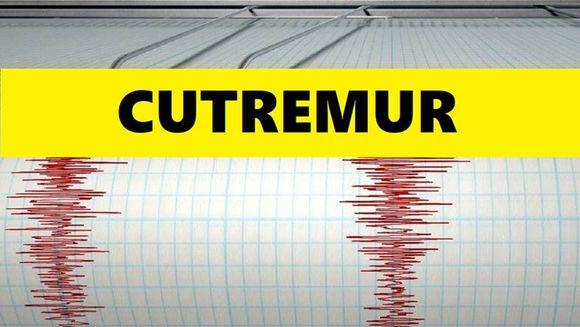 Cutremur puternic în Vrancea în urmă cu putin timp. Ce magnitudine a avut seismul