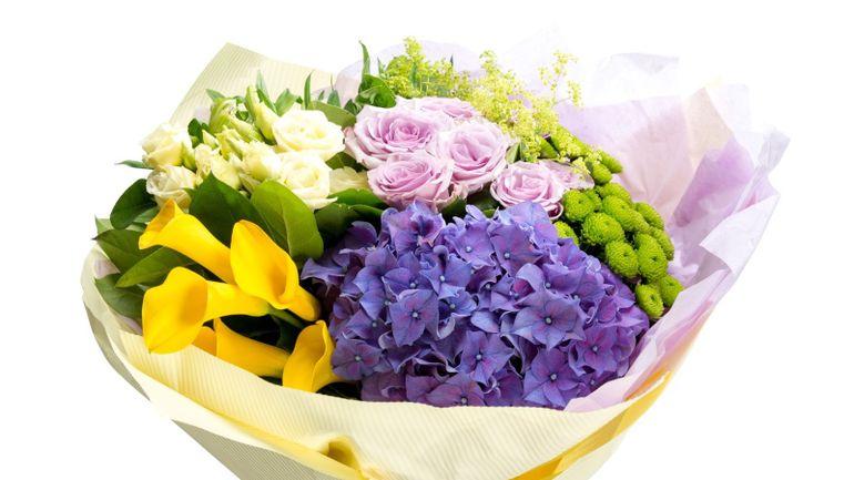 Alege Buchete De Flori Cu Hortensie Pentru Ziua De Nastere A Persoanei