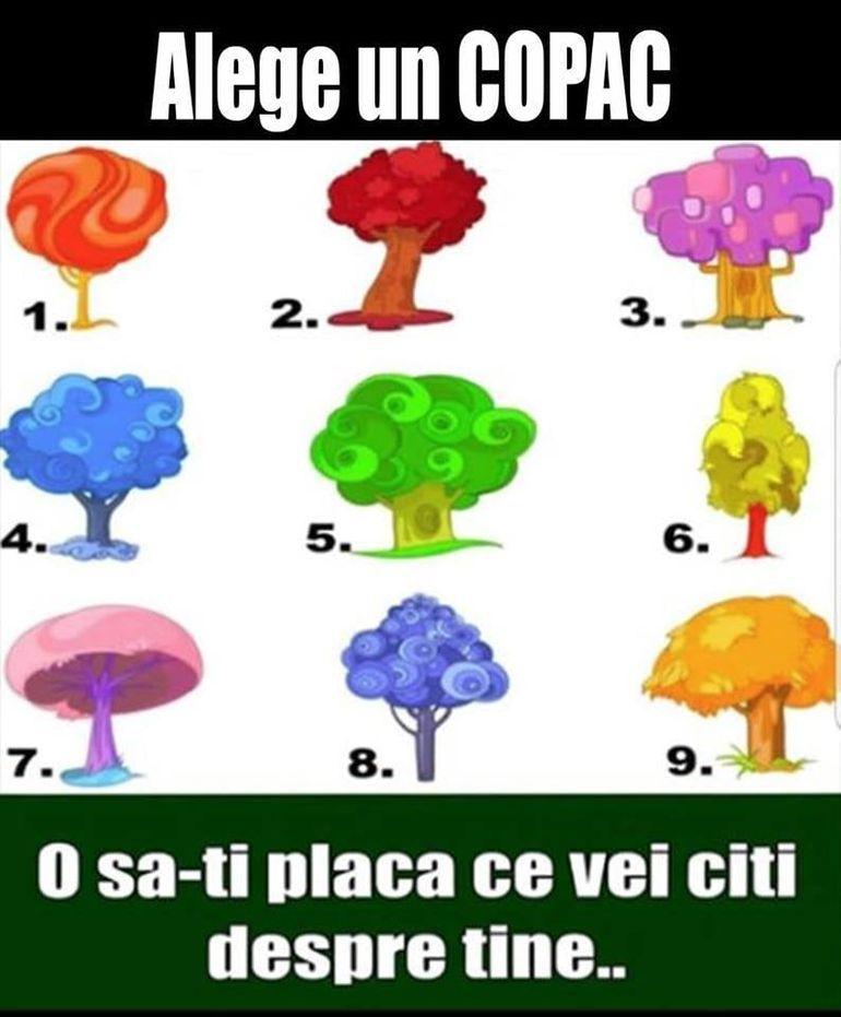 test alege un copac