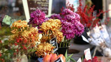 Esti din Bucuresti si vrei sa daruiesti cuiva flori? Comanda-le online!